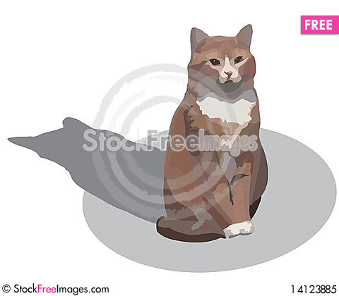 Free Almost Red Cat Royalty Free Stock Photo - 14123885