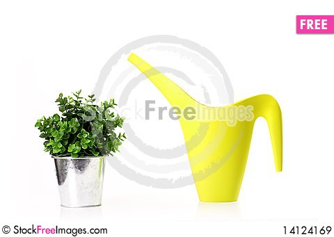 Free Potted Flower And Watering Can. Royalty Free Stock Images - 14124169