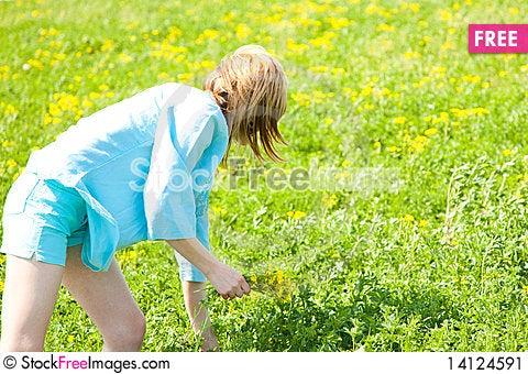 Free Enjoying The Nature Stock Image - 14124591