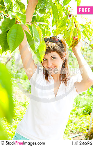 Free Beautiful Girl Between The Trees Royalty Free Stock Image - 14124696