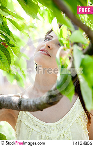 Free Beautiful Girl Between The Trees Royalty Free Stock Image - 14124806