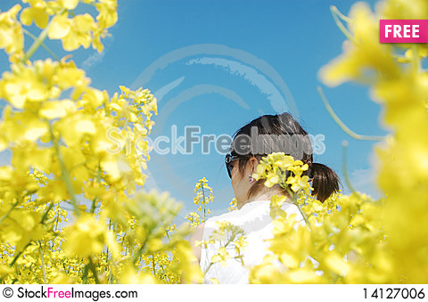 Free Girl In Flowers Royalty Free Stock Image - 14127006