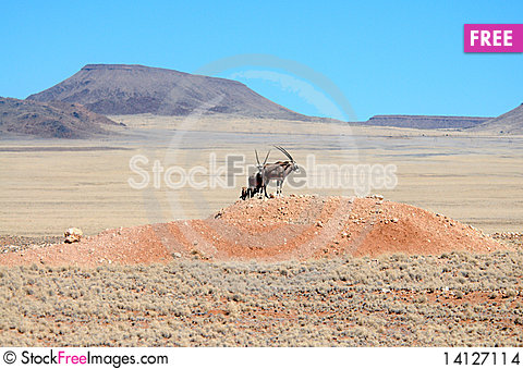 Free African Landscapes - Namibia Stock Images - 14127114