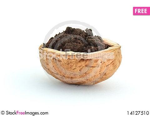 Free Wallnut Shell With Soil Stock Photo - 14127510