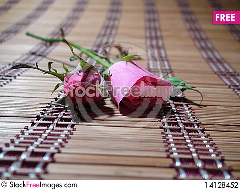 Free Pink Roses Stock Photography - 14128452
