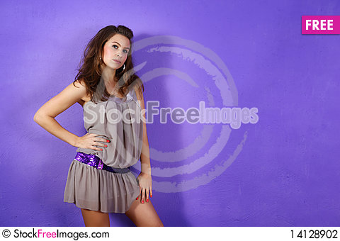 Free Portrait Of A Young Woman Stock Photography - 14128902