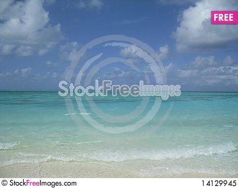 Free Tropical Beach Royalty Free Stock Photo - 14129945