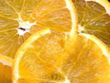 Free Slices Of Fresh Oranges Texture Royalty Free Stock Images - 14120919