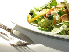 Free Salad Royalty Free Stock Photo - 14121805