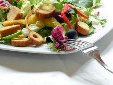 Free Salad Royalty Free Stock Photo - 14121995