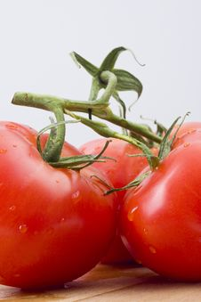 Free Fresh Tomatoes Royalty Free Stock Image - 14122656