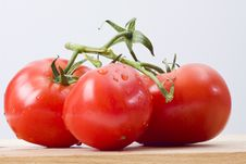 Free Fresh Tomatoes Royalty Free Stock Photography - 14122667