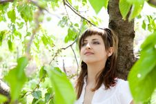 Beautiful Girl Between The Trees Stock Photo