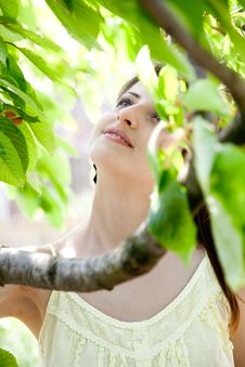 Beautiful Girl Between The Trees Royalty Free Stock Image