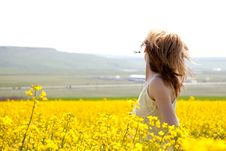 Girl In A Rapeseed Field Stock Images