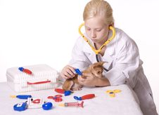 Free Girl Veterinarian With Puppy And Tweezers Royalty Free Stock Image - 14126706