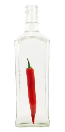 Free Chili Pepper Inside The Bottle Royalty Free Stock Photos - 14126838