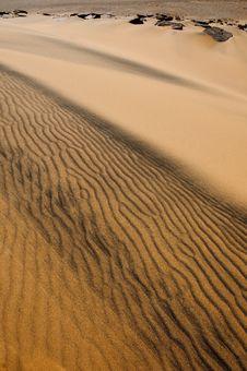 Free Algeria Sahara Dune Landscape Stock Images - 14127394
