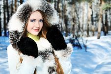 Free Cold Weather Stock Images - 14128634