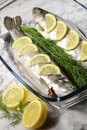 Free Fish On A White Plate With Lemons And Dill Royalty Free Stock Photo - 14138745