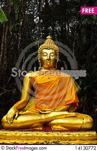 Free Lord Buddha Stock Photography - 14130772