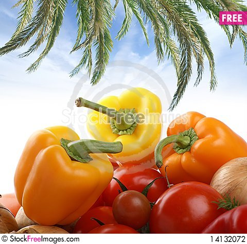 Free Image Of Different Fresh And Tasty Vegetables Stock Photography - 14132072