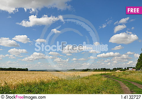 Free Summer Landscape. Royalty Free Stock Photography - 14132727