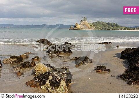 Free Whangapoua Shoreline New Zealand Stock Photo - 14133020