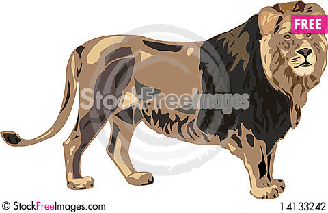 Free King Of Beasts - Lion Stock Photography - 14133242