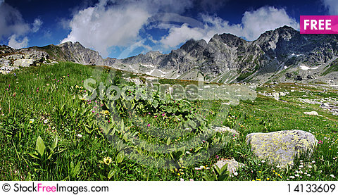 Free Spring In Mountains Royalty Free Stock Images - 14133609