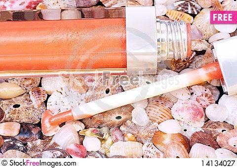 Free Lip Gloss On Seashell Background Royalty Free Stock Photography - 14134027