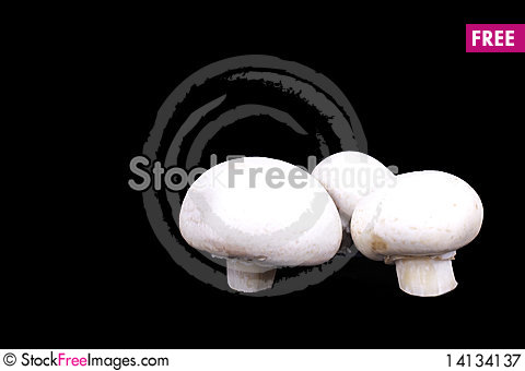 Free Three Champignons  On Black Royalty Free Stock Photography - 14134137