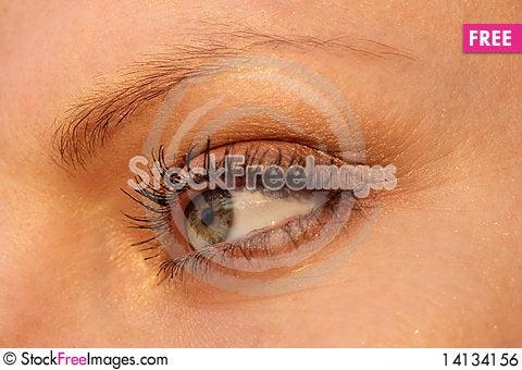 Free Beautiful Woman Eye Royalty Free Stock Image - 14134156