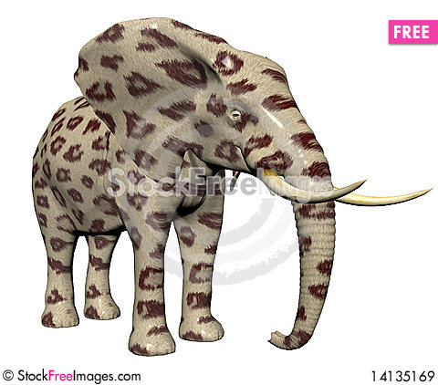 Free Elephant In Big Cat Fur Royalty Free Stock Images - 14135169