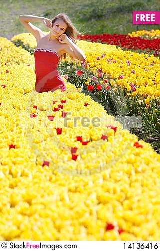 Free Beautiful Girl In Yellow And Red Tulips Royalty Free Stock Image - 14136416