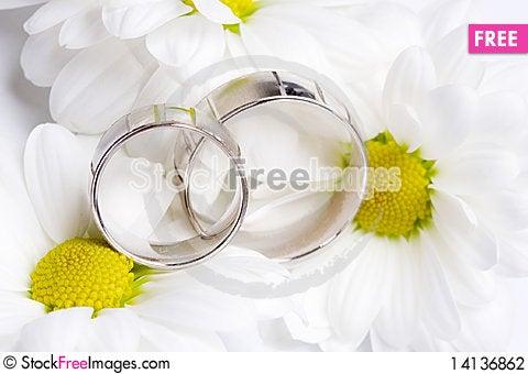 Free Wedding Rings Stock Photography - 14136862