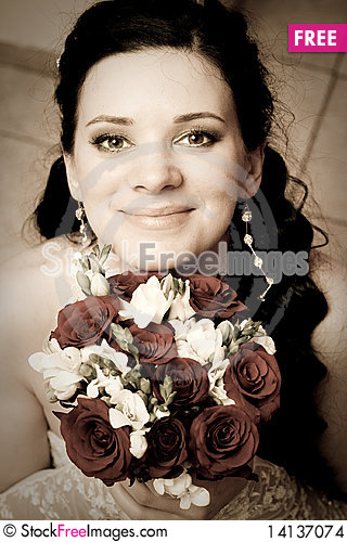 Free Bride Stock Images - 14137074