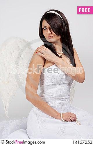 Free Bride Stock Photos - 14137253