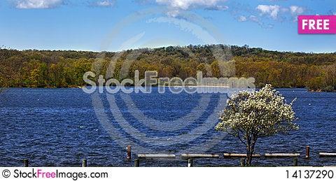 Free Scenic Lake Shore Stock Photo - 14137290