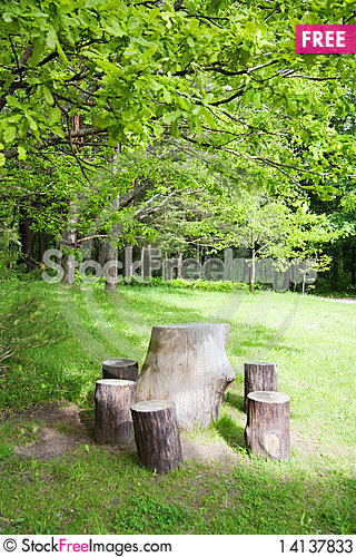 Free Stumps In The Park Stock Photos - 14137833