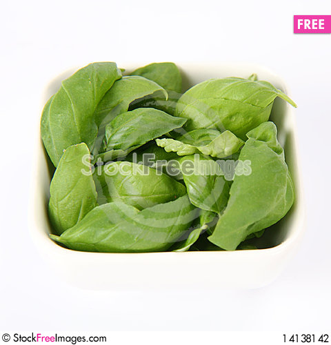 Free Basil Leaves Stock Photography - 14138142
