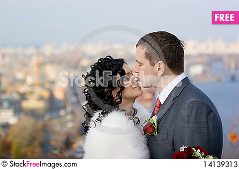 Free Bride And Groom Stock Photos - 14139313