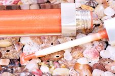 Free Lip Gloss On Seashell Background Royalty Free Stock Photography - 14134027