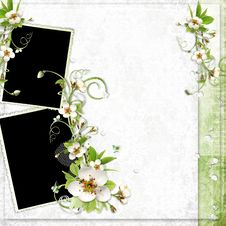Spring Frame With Apple Tree Flowers Royalty Free Stock Photos