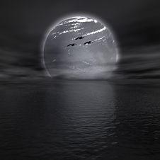 Free Moon Royalty Free Stock Photos - 14135188