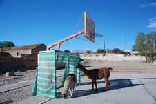 Small Chilean Village Basketball Court Royalty Free Stock Photo