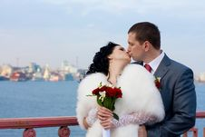 Free Bride And Groom Stock Images - 14135994