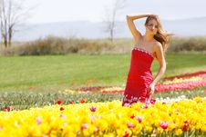 Free Beautiful Girl In Yellow Tulips Royalty Free Stock Photos - 14136288