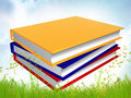 Free Pile Of Colorful Books In Meadow Royalty Free Stock Images - 14149019