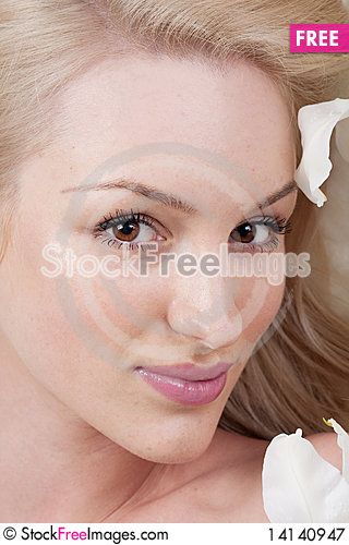 Free Portrait Woman Royalty Free Stock Photography - 14140947
